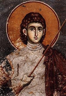 H. grootmartelaar Proconius